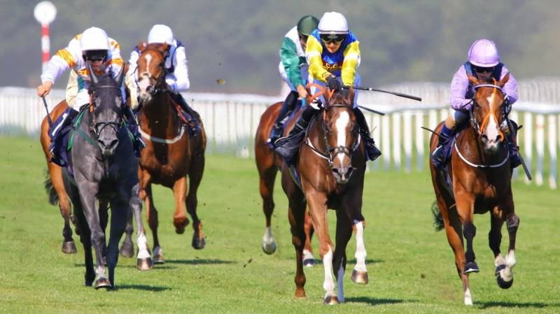 Gullane One battles on gamely to win at Doncaster