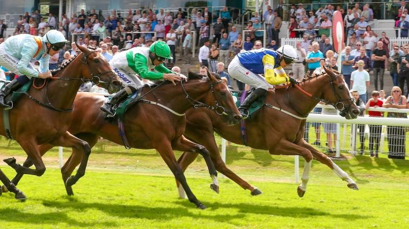 Gullane One makes all to win at Hamilton