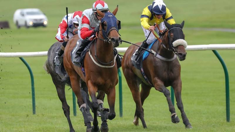 Supaulette pulls clear in the last furlong to win well at Ayr