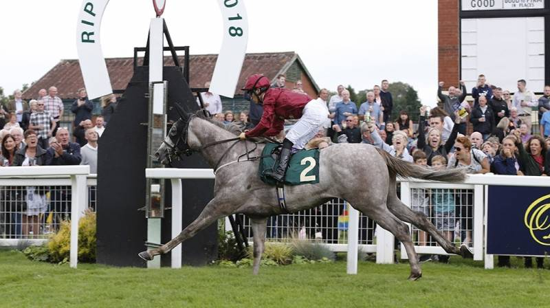 Off Piste pulls clear in the closing stages to win at Ripon