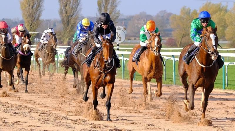 Gremoboy showed plenty of determination to win at Southwell