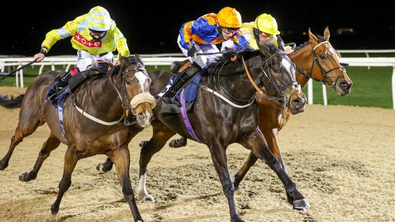 PERFECT SWISS just holds on to win at Newcastle