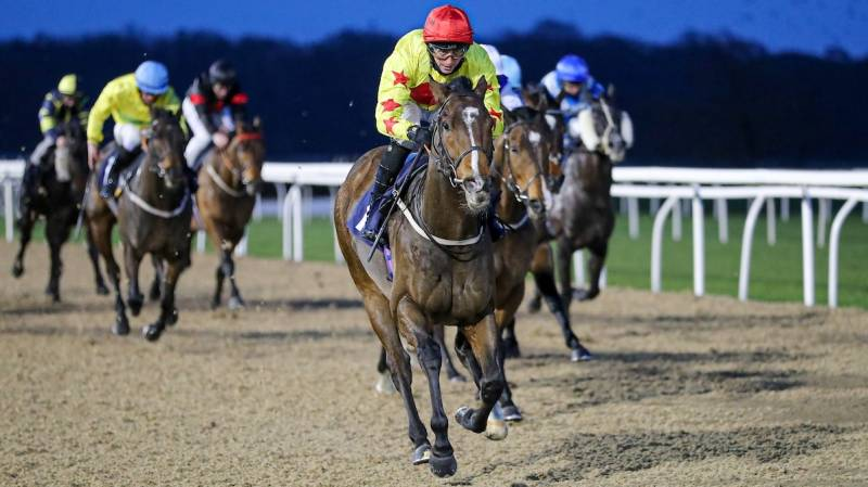 JEWEL MAKER gains a well deserved success at Newcastle