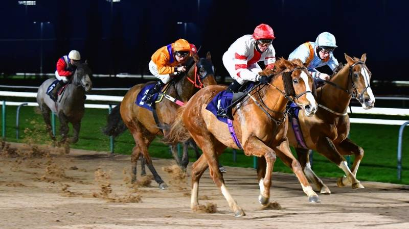 EXCESSABLE finishes strongly to win at Southwell