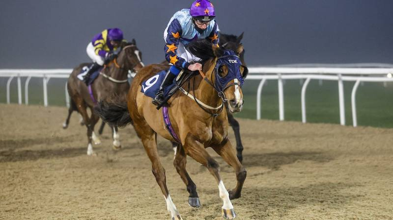 VIVE LA DIFFERENCE returns to form with a win at Newcastle